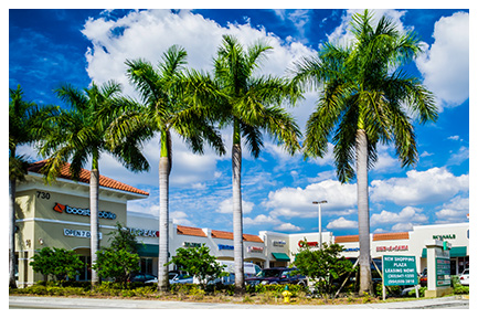 Hallandale Plaza Commercial Property